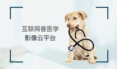 互联网兽医学影像云平台